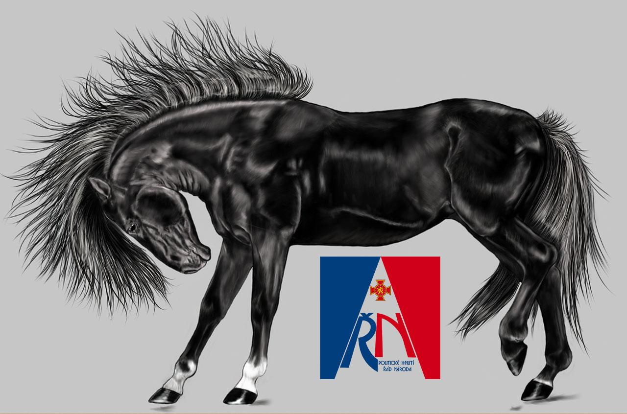 Černý kůň voleb 2017