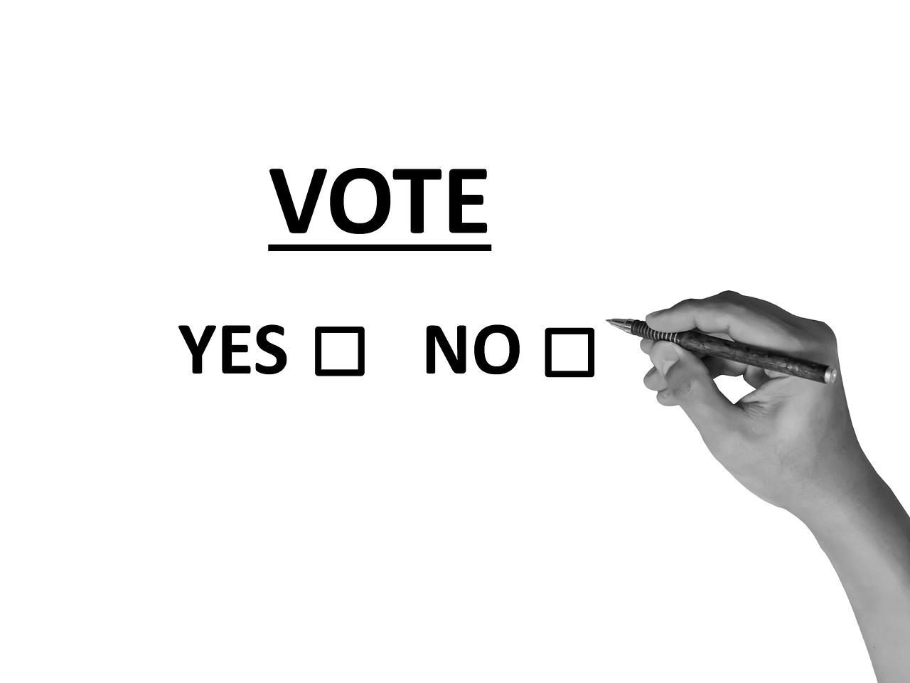 Zákon o referendu a referendum o vystoupení z Evropské unie