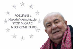 Rozumní - Národní demokracie eurovolby